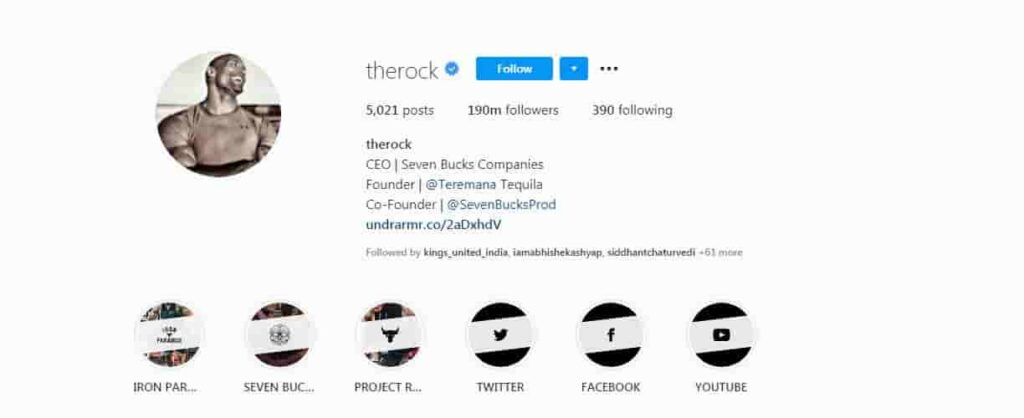 the rock instagram Bios