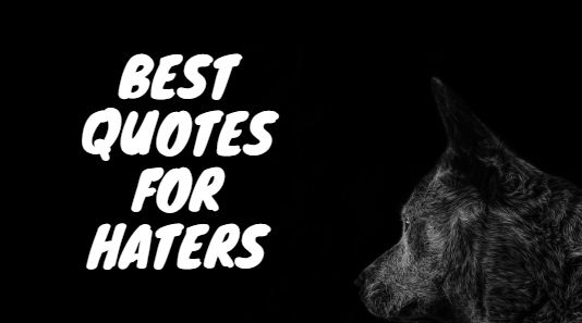 best quotes for haters