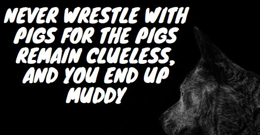 Never wrestle with pigs for the pigs remain clueless, and you end up muddy