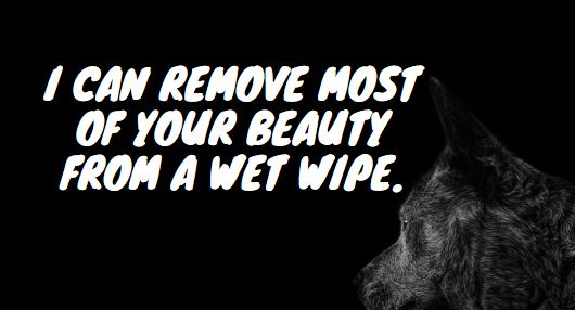 I can remove most of your beauty from a wet wipe.